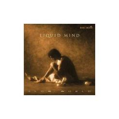 CD Slow World