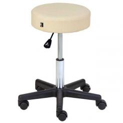 Adjustable Swivel Stool BASIC